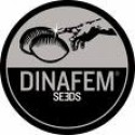 dinafem-mix