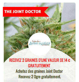 promo sur les graines the joint doctor